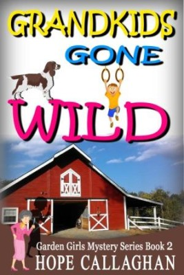 Grandkids Gone Wild – A Christian Book By Hope Callaghan