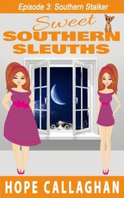 Southern Stalker – Episode 3 in the Sweet Southern Sleuths Short Stories