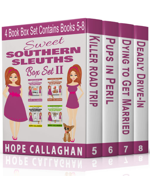 Sweet Southern Sleuths Box Set 2
